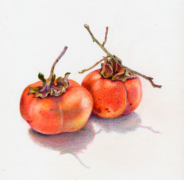 Two Persimmons by Kaye Synoground