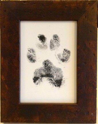 ink-paw-print