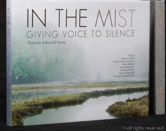 Cover of In the Mist: Giving Voice to Silence