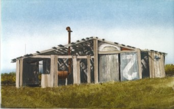 Eccentric shed sitting in a meadow