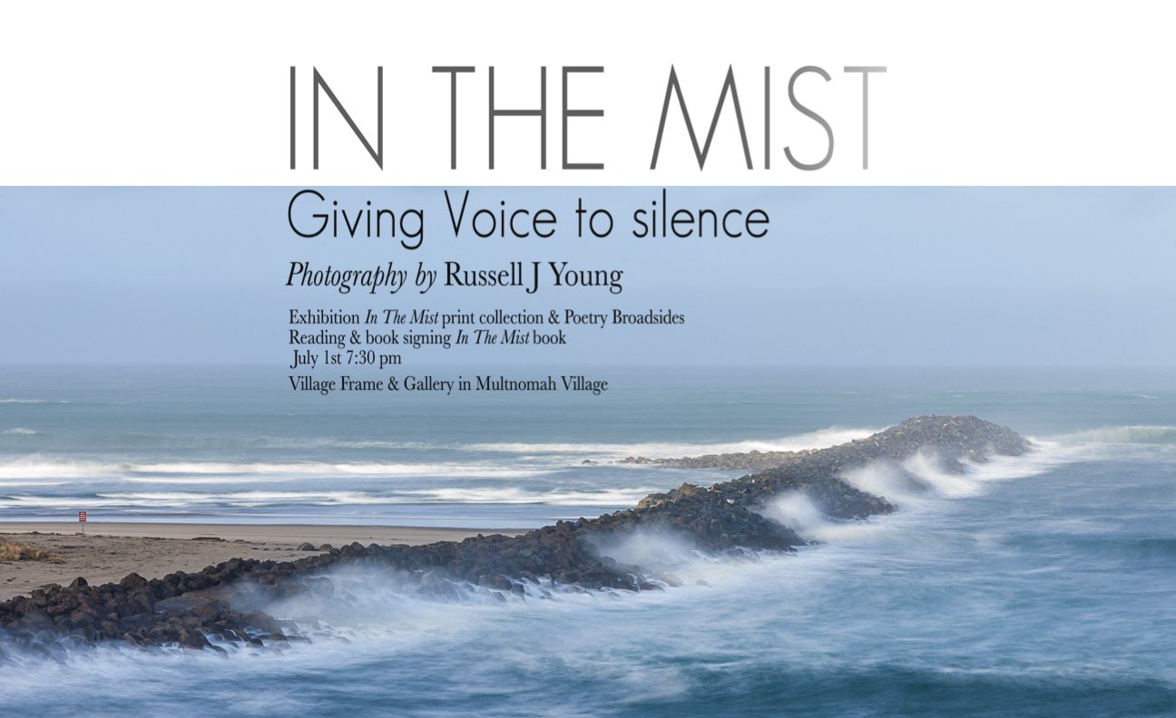 Cover of In the Mist