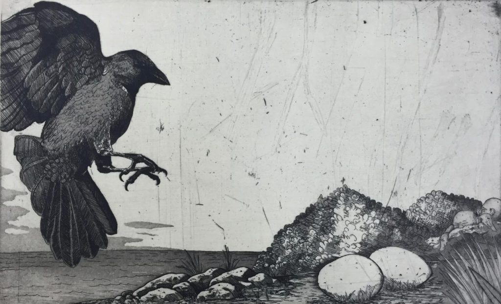 Etching of crow landing in front of eggs