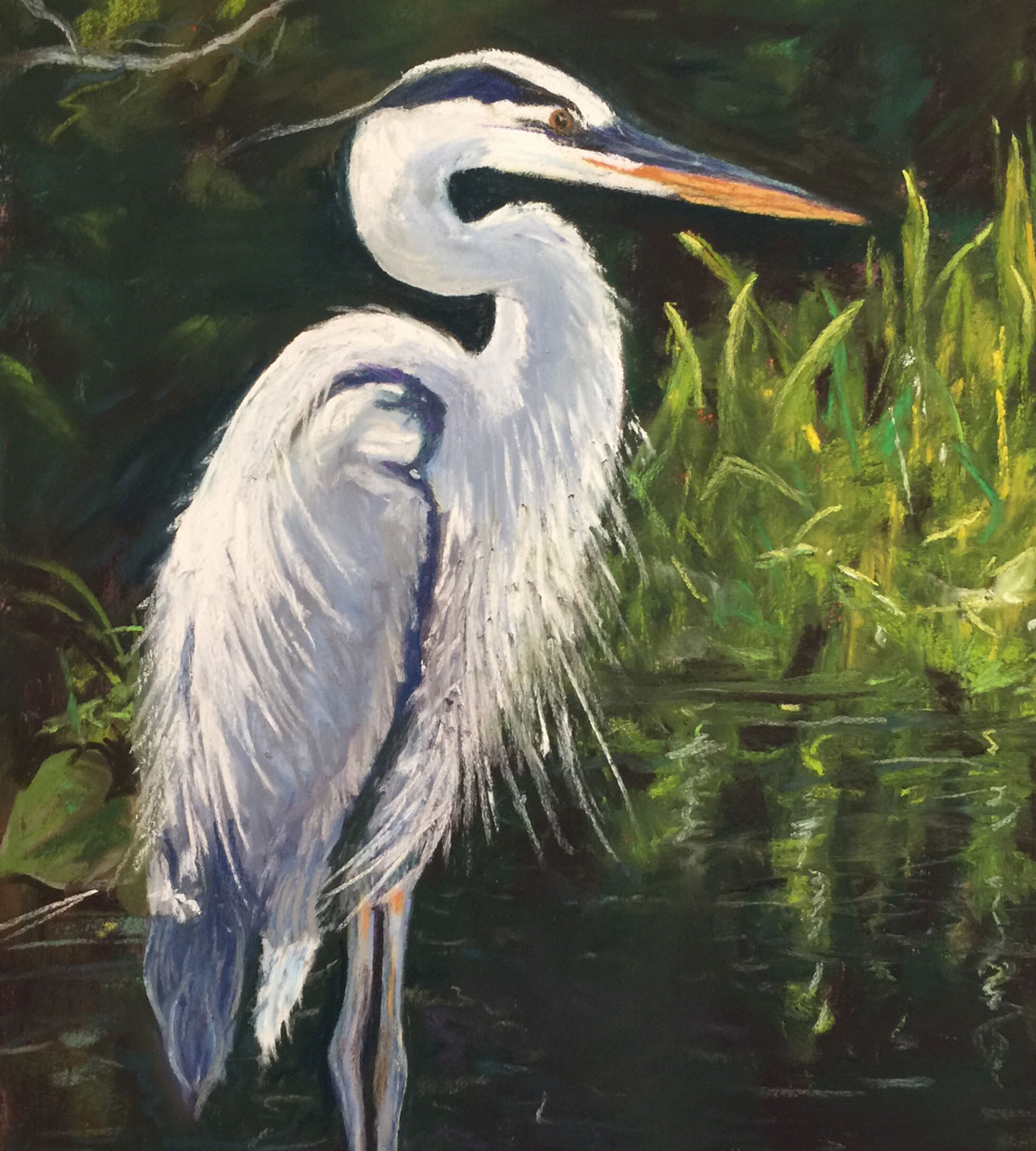 Pastel drawing of Great Blue Heron standing at the edge of a body of water surrounded by grass.